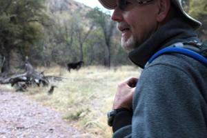 Bob approaches a free range cow in southern Arizona near the U.S.-Mexico border