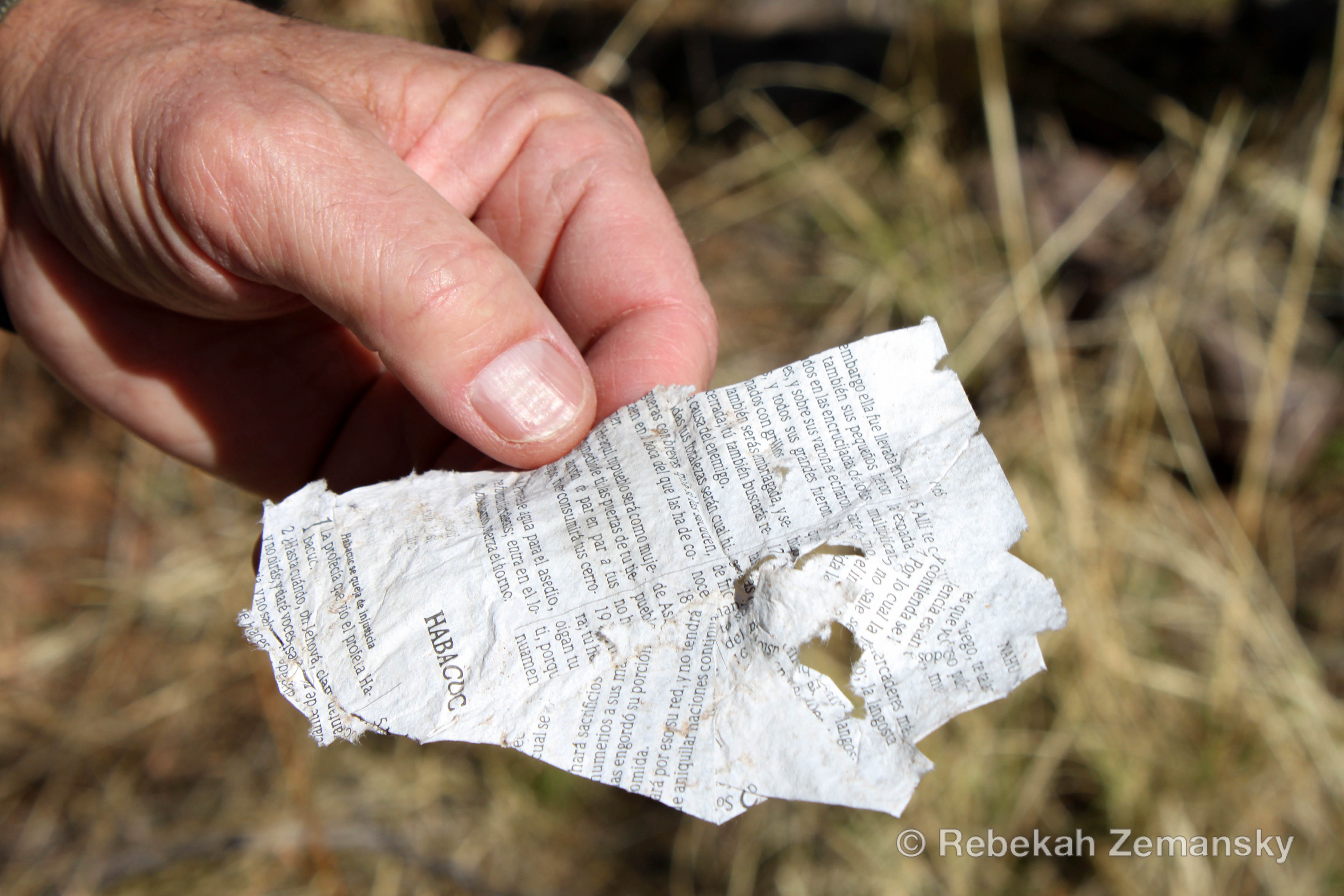 fragment of a Spanish Bible found in Tumacácori, Arizona on 13 February 2010